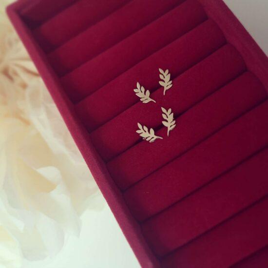 cerceo Mistletoe aur
